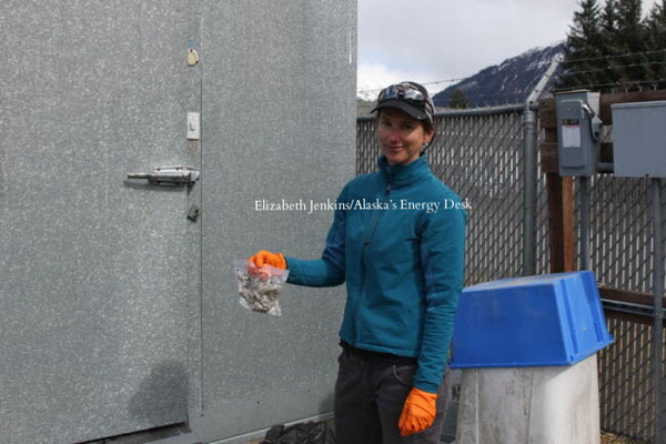 グレッグ・ストレベラーが集めたオオカミのフンを持っているグレッチェン・ロフラー(Photo by Elizabeth Jenkins/Alaska's Energy Desk)