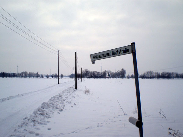 Winterlandschaft in Wilhelmsaue