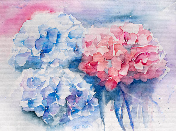 Malen lernen im Kurs, Hortensien malen, Aquarelle, Watercolor, Malen lernen, Hydrangea, painting,flower,watercolorflower
