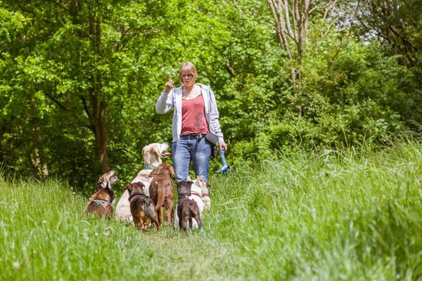 Hundetrainerin Rebecca gibt einer Hundegruppe in Hamburg Signale
