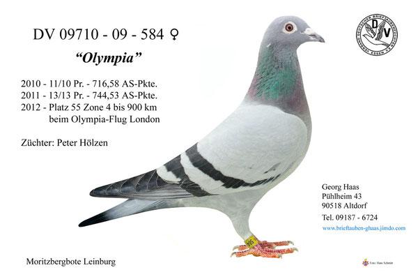 09710-09-584 'Olympia'
