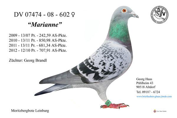 07474-08-602 'Marianne'