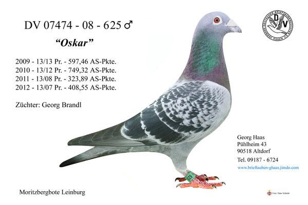 07474-08-625 'Oskar'