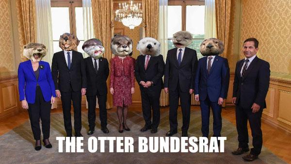 Otter Fauntleroy blog rettung der menschheit bundesrat schweiz 2017 uehuehueh