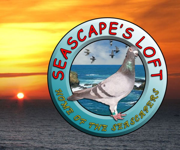 Seascapes Loft Logo