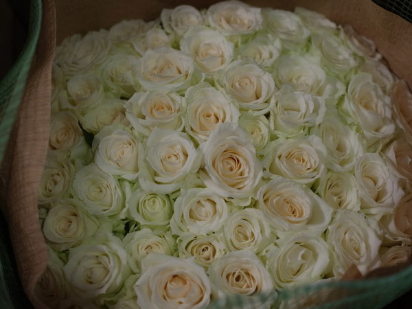news設計室 誕生日 白いバラ 60本
