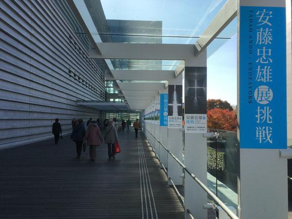 news設計室 国立新美術館 安藤忠雄展 長野県松本市安曇野市の建築家