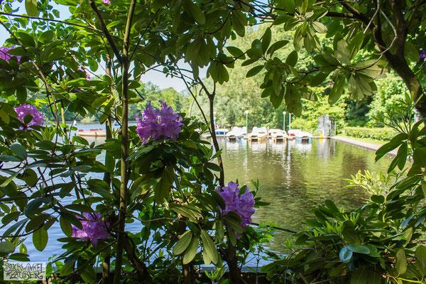 Bootsverleih bei der Rathsmühlenbrücke