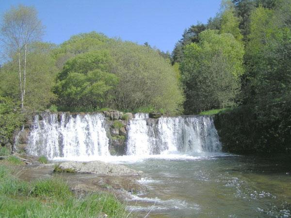La rivière où j'ai vraiment  appris à pêcher !