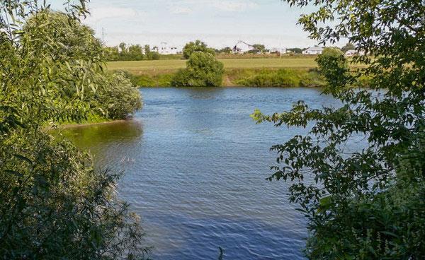 Река Быстрая Сосна  в районе сёл Ериловка и Черкассы