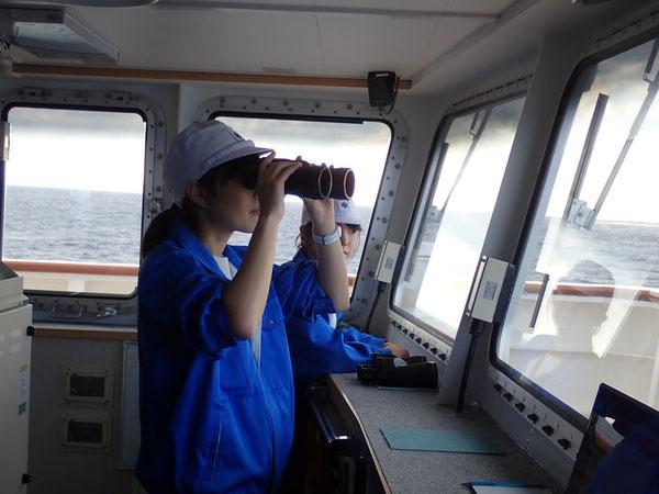 水産大学校ホームページ: http://www.fish-u.ac.jp/b_rensyusen/tenyoumaru/album/1010/index.html