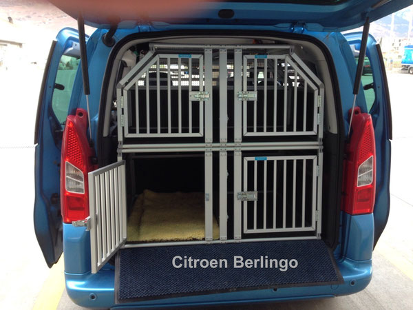 Citroen Berlingo, (A-954D/X-681-D)
