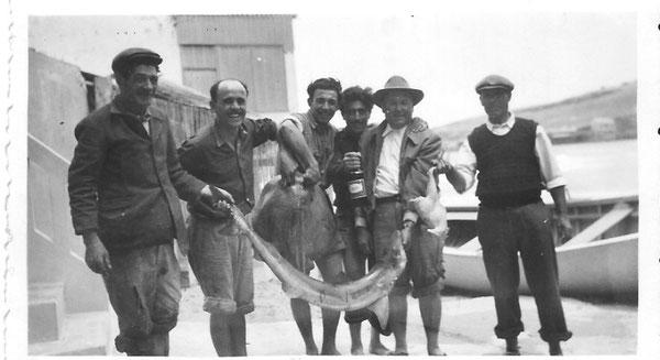 1955 De gauche à droite : XXX , François SANTIAGO, Victor,  XXX, Marcel et Juan.