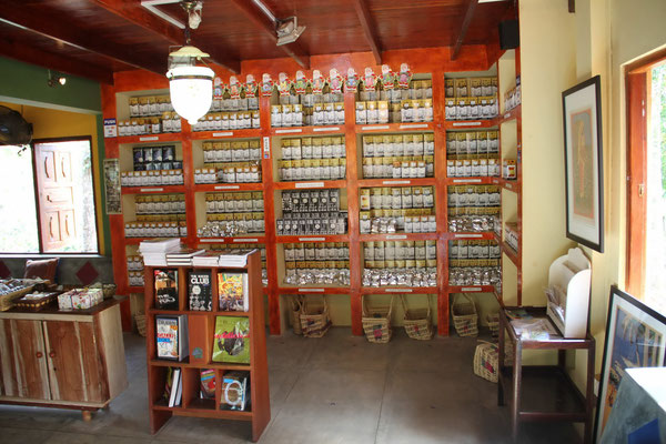 Teegeschäft auf Ceylon; Bild Fam. Bilat