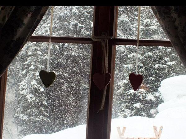Blog:  Warm um's Herz