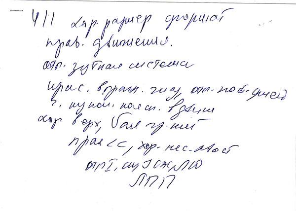 Ю САС, Лучший Юниор, ЛПП эксперт Патрина