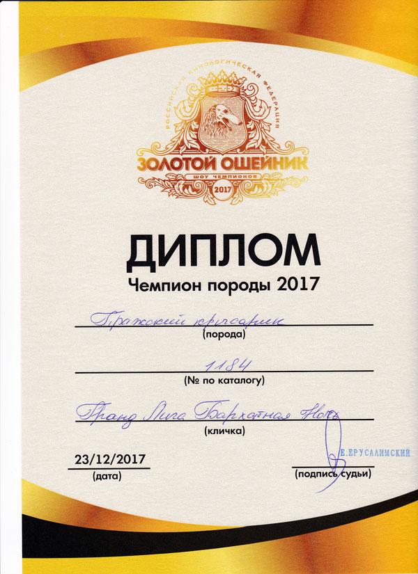 Золотой ошейник - 2017  , Чемпион породы 2017,эксперт Ерусалимский