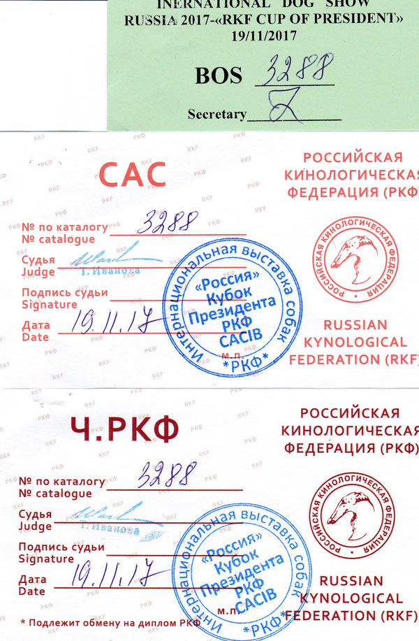 Кубок президента РКФ - 2017  ЛС, Ч.РКФ, ВОS эксперт Иванова