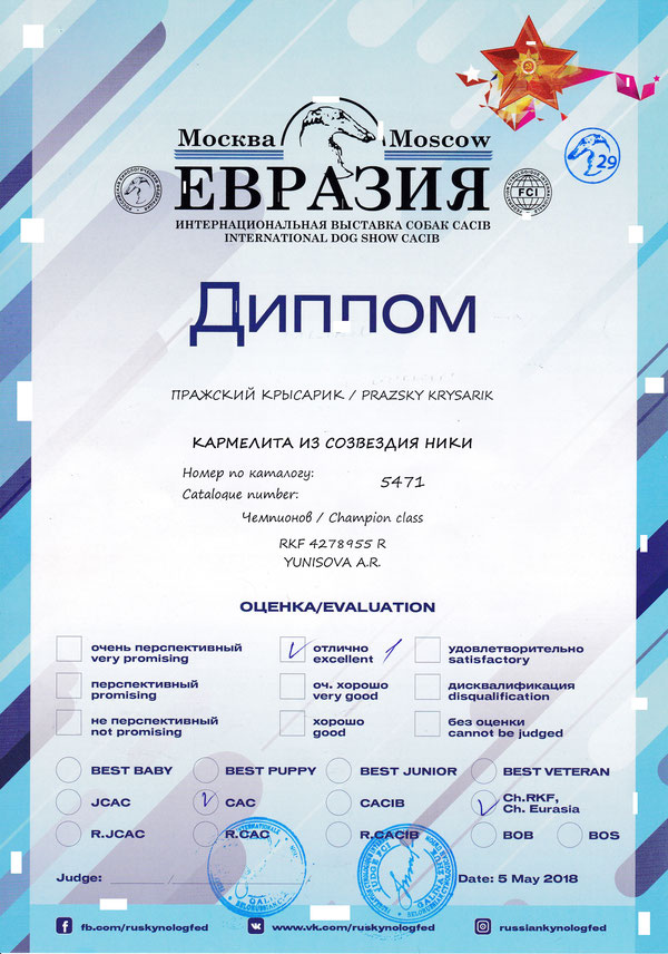 Евразия 2018  эксперт Жук(Белорусия) Чем Евразии, Чемп РКФ