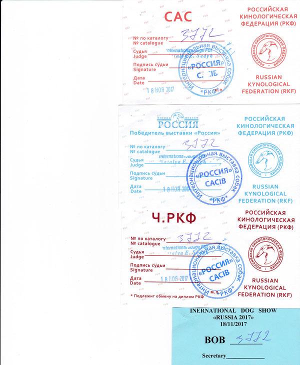 Россия -2017 победитель выставки Россия, Ч .РКФ, ВОВ экспер  Седых