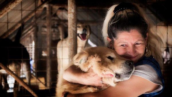 Foto:  Tierhilfe Hoffnung eV