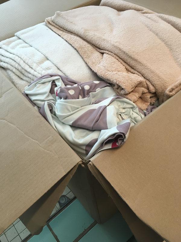 Ein großer Karton prall gefüllt mit Handtüchern, Bettwäsche und Decken für die Tiere.