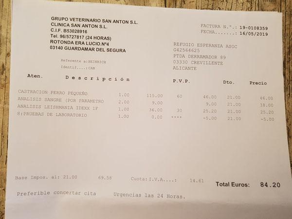Kastration und Bluttests Rüde Heinrich