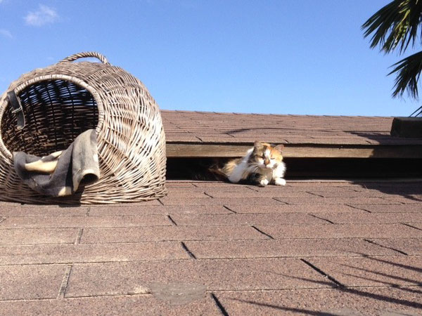 Monika genießt die warmen Sonnenstrahlen