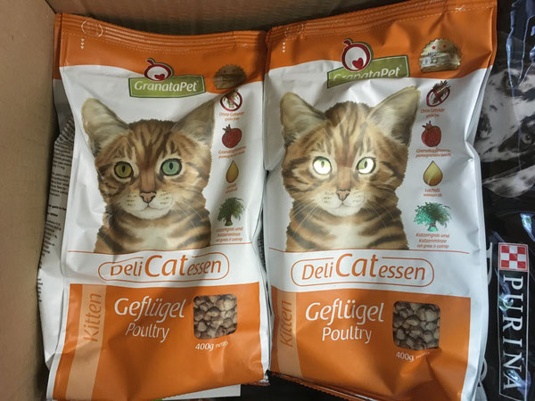 Trockenfutter für die Kitten