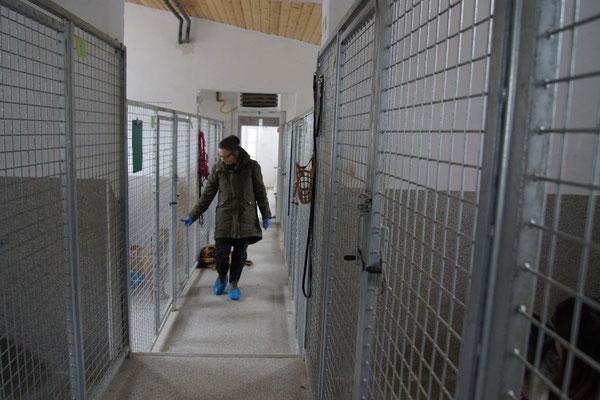 Marianne bei einem ihrer Besuche im Tierheim