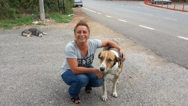 Gabi (Gabis Tierschutz Antalya eV)