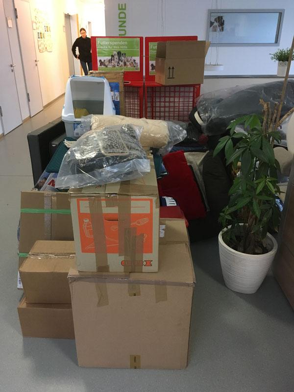 Unsere Spenden im Tierheim Koblenz