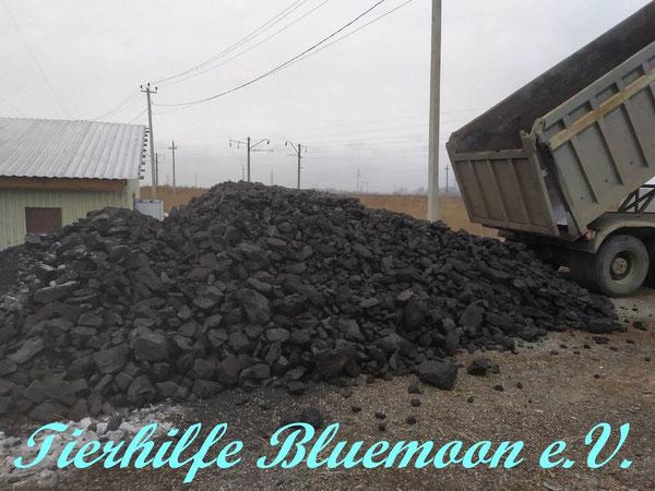 4 LKWs bringen Kohle für 3000 € damit geheizt werden kann
