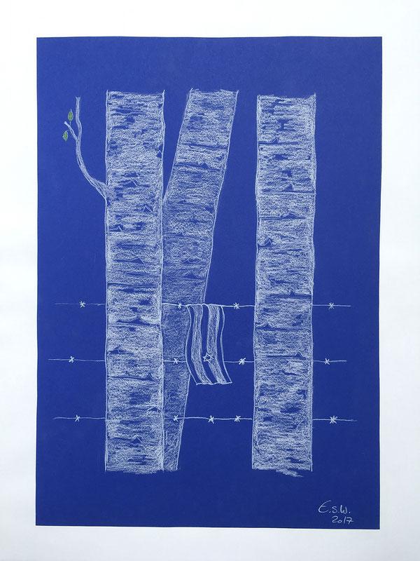 Birchs of Auschwitz, Polychromos, 30x40 cm, 2017.