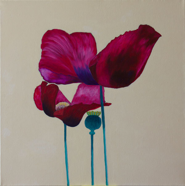Mohnblumen/Poppies, Oel auf Leinwand/Oil on canvas, 50x50 cm.