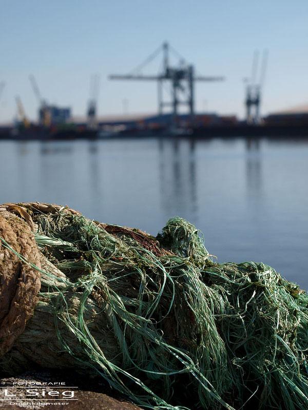 Hafenbilder aus Bremen Fotos Hafen Bremen Holzhafen Europahafen Überseehafen
