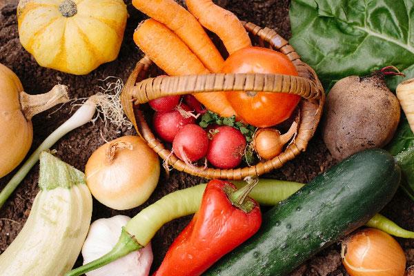 旬の野菜を摂取するメリットとは?
