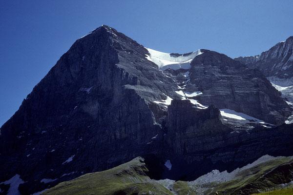 Bild: Eiger 3970 m Nord-und Westwand