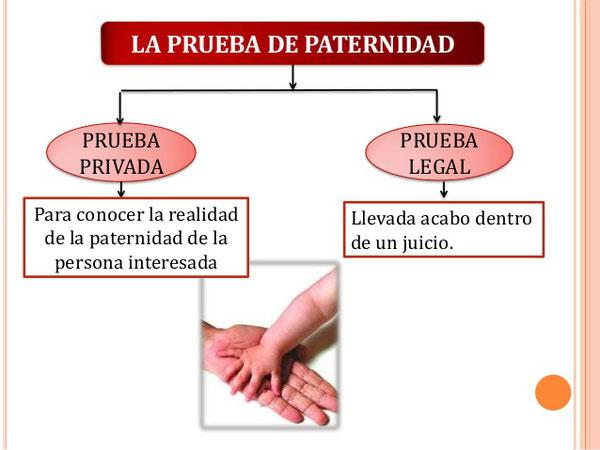 C/Alcarria,7 28823 Coslada MADRID     info.genomica@genomica.com   Telf.:91 674 89 90