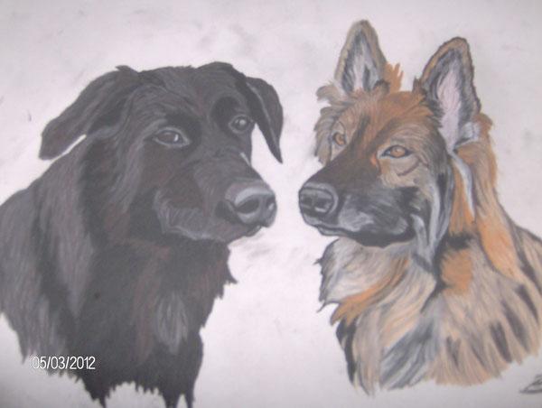 Balu - Labradormix  und       Cora - Schäferhündin