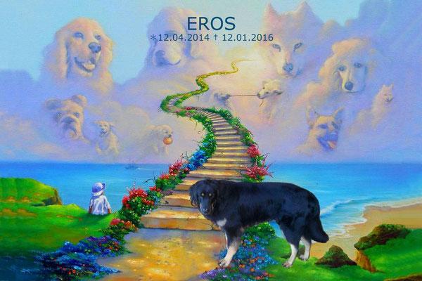 Eros, Hovawartrüde ca. 2 Jahre starb an Vergiftung