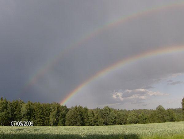 über diese schöne Regenbogenbrücke direkt vor unserem Haus dürfen alle unsere Tiere in das Land des Friedens gehen
