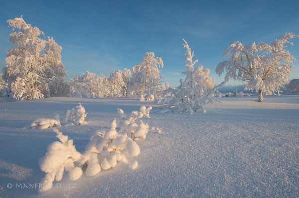 Winterlandschaft in Finnland
