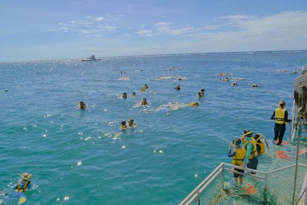 青い空、青い海、大人も子供もはしゃいで泳ぐ~。
