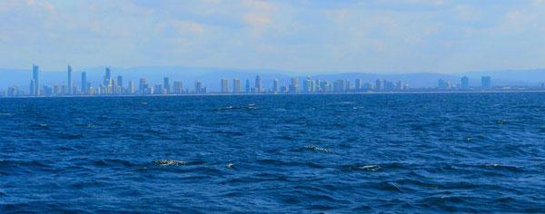 サーファーズ沖、約3kmの地点に到着。このあたりでクジラ探し開始~。