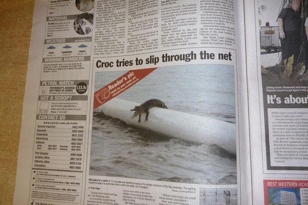 これ恐くない!?くらげよけのセーフティネット越えてクロコダイルが遊泳エリアに乱入する瞬間。