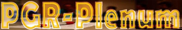 EINLADUNG zum PGR Plenum (öffentlich)