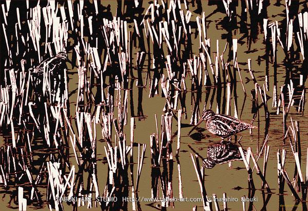 タシギ 野鳥 タペストリー ワイルドライフアート