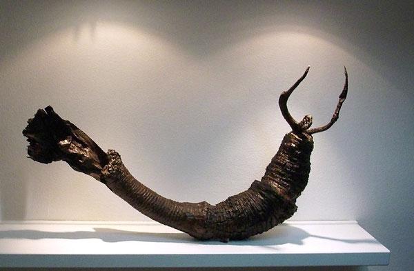 Amador Vallina: Metamorfósil, 2009