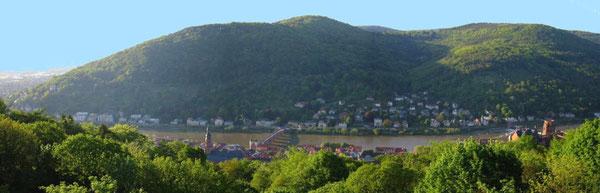 Der Panoramablick von der Terasse